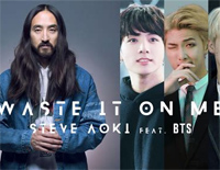Waste It On Me-Steve Aoki ft BTS
